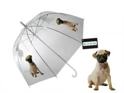 parasol-umbrella-doggy.jpg