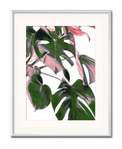 Obraz Liść Monstera pink